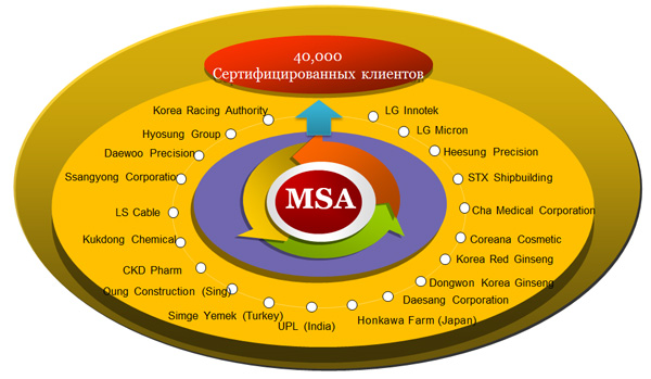 Клиенты MSA Certification